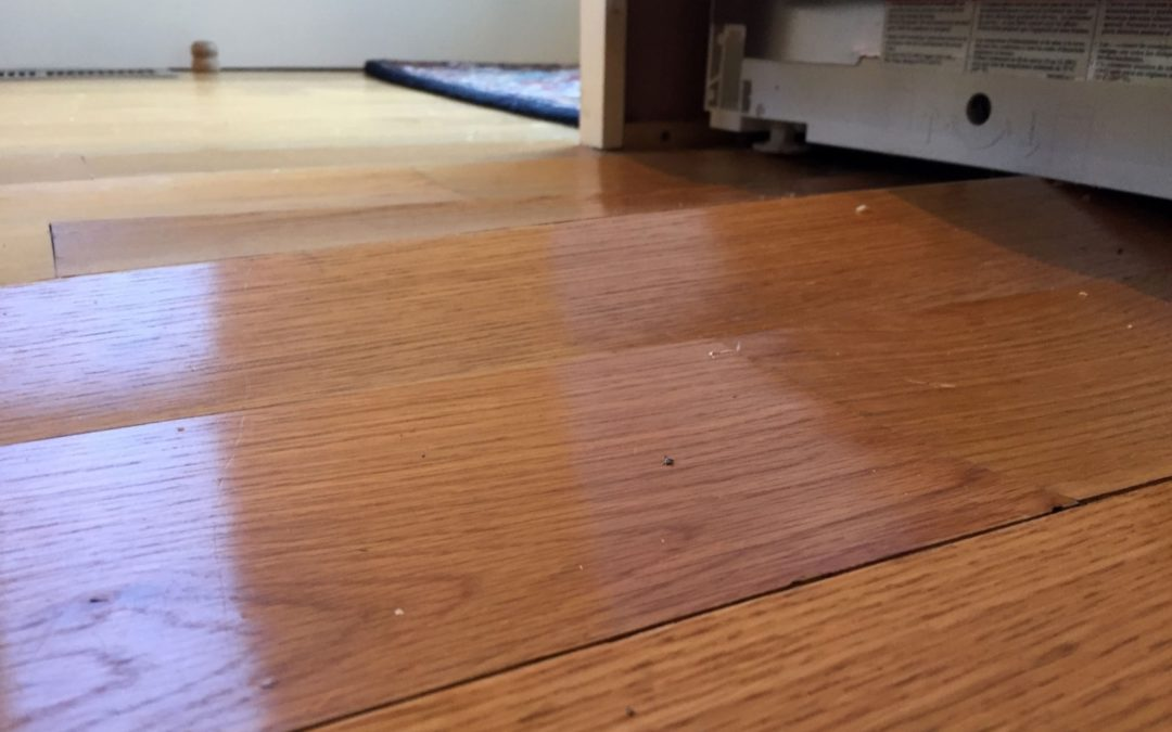 Water Damage and Hardwood Floors